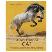 Album de arta. Cei mai frumosi cai - Gabriele Boiselle
