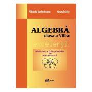 Algebra. Excelenta - Clasa 8 - Mihaela Berindeanu, Gyuszi Szep