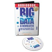 Audiobook. Big Data - Viktor Mayer-Schonberger