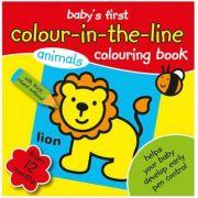 Baby's First Colour-in-the-line 2 - prima carte de colorat cu animale