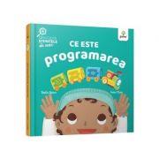 Ce este programarea - Ruth Spiro, Irene Chan