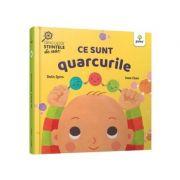 Ce sunt quarcurile - Ruth Spiro, Irene Chan