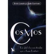 Cosmos - Ervin Laszlo, Jude Currivan