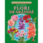 Flori de gradina - Silvia Ursache