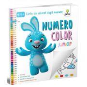 NumeroColor. Junior