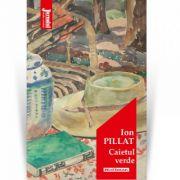 Caietul verde - Ion Pillat