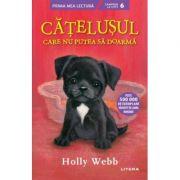 Catelusul care nu putea sa doarma - Holly Webb