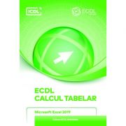 ECDL. Calcul Tabelar. Microsoft Excel 2019 - Ionut Danaila