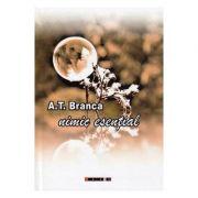 Nimic esential - A. T. Branca