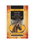 Silver Blaze - Arthur Conan Doyle