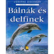 Balnak es delfinek. Balene si delfini