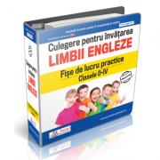 Culegere pentru invatarea limbii engleze. Fise de lucru practice Clasele 0-IV - Daniela Stefania Ionescu