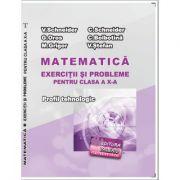 Matematica Exercitii si probleme pentru clasa a X-a. Profilul Tehnologic - Virgiliu Schneider