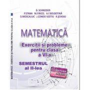 Matematica. Exercitii si probleme clasa a VI-a Semestrul al II-lea - Delia Schneider