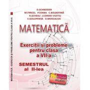Matematica. Exercitii si probleme clasa a VII-a Semestrul al II-lea - Delia Schneider