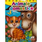 Animale domestice. Ochisori