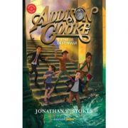 Addison Cooke si inelul destinului - Jonathan W. Stokes