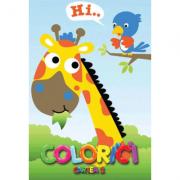 Colorici. Cartea 2