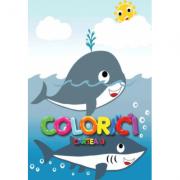 Colorici. Cartea 3