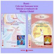 Pachet 2 carti. Rumi Cele mai frumoase texte. Selectie si traducere de Marius Ghidel