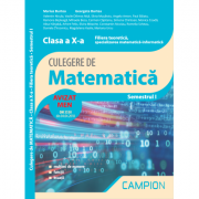 Culegere de matematica. Clasa a X-a. Semestrul I. Filiera teoretica, specializarea matematica-informatica - Marius Burtea, Georgeta Burtea