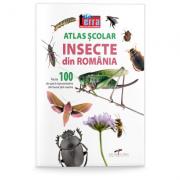 Atlas scolar. Insecte din Romania