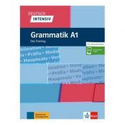 Deutsch intensiv Grammatik A1, Buch + online. Das Training - Christiane Lemcke, Lutz Rohrmann
