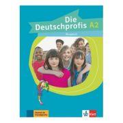 Die Deutschprofis A2. Übungsbuch - Olga Swerlowa