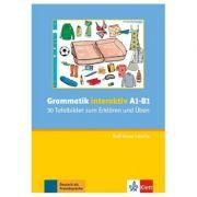 Grammatik interaktiv A1 - B1: 30 Tafelbilder zum Erklaren und Uben CD-Rom - Ralf-Peter Lösche