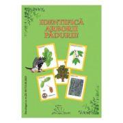 Identifica arborii padurii