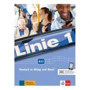 Linie 1 A1. 1, Kurs- und Übungsbuch mit DVD-ROM. Deutsch in Alltag und Beruf - Eva Harst, Susan Kaufmann, Ulrike Moritz