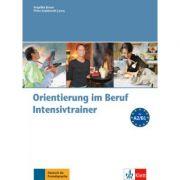 Orientierung im Beruf. Erfolgreich handeln im Beruf. Intensivtrainer mit Audio-CD - Angelika Braun, Petra Szablewski-Cavus