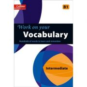 Work on Your… - Vocabulary B1. A practice book for learners at Intermediate level