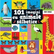 101 imagini cu animale salbatice