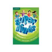 Super Minds Level 2, Flashcards - Herbert Puchta, Gunter Gerngross, Peter Lewis-Jones