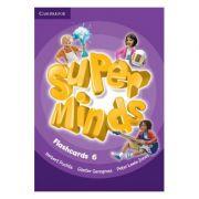 Super Minds Level 6, Flashcards - Herbert Puchta, Gunter Gerngross, Peter Lewis-Jones