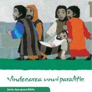 Vindecarea unui paralitic. Seria Asa spune Biblia - il. Kees de Kort