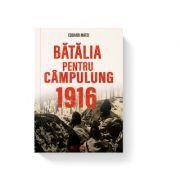 Batalia pentru Campulung 1916 - Eduard Matei