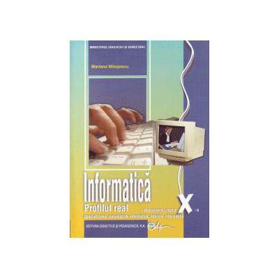 Manual informatica - clasa a X-a (real - intensiv informatica)