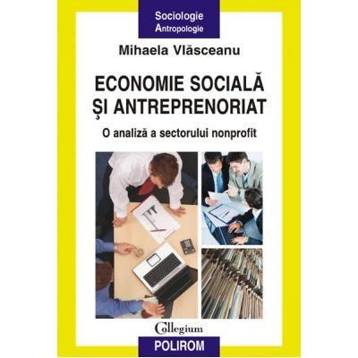 Economie sociala si antreprenoriat - O analiza a sectorului nonprofit (Mihaela Vlasceanu)