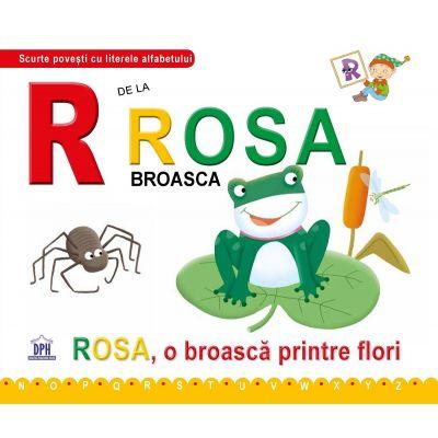 R de la Rosa, broasca. Cartonata - Greta Cencetti
