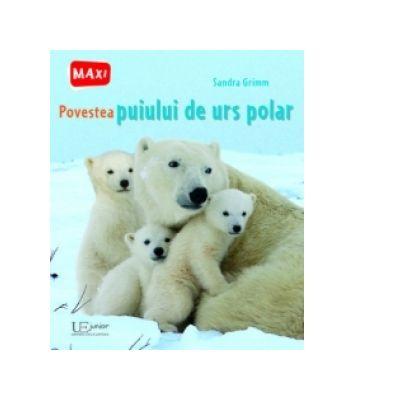 Povestea puiului de urs polar - Sandra Grimm