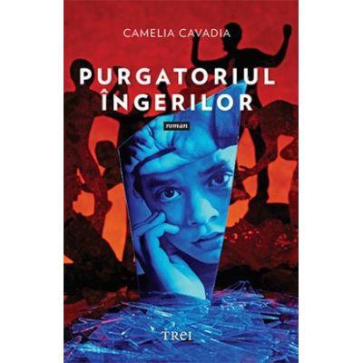 Purgatoriul ingerilor - Camelia Cavadia