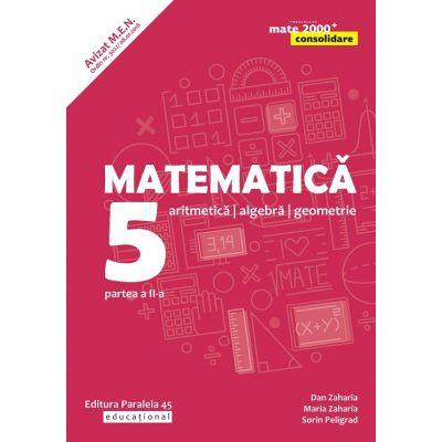 Matematica. Aritmetica, algebra, geometrie. Clasa a V-a. Consolidare. Partea a II-a - Sorin Peligrad