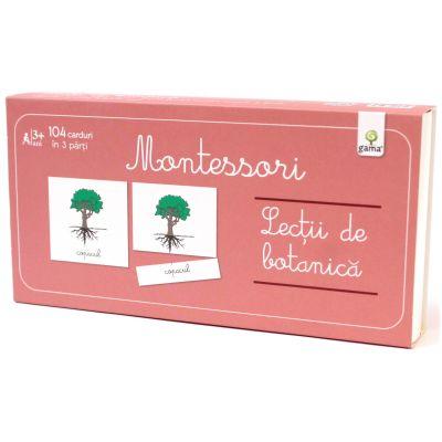 Lecti Montessori. Lectii de botanica