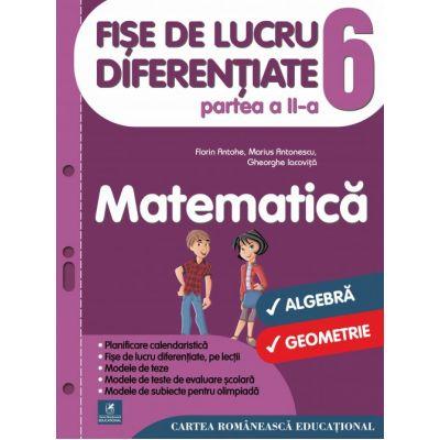 Fise de lucru diferentiate. Matematica. Clasa a VI-a. Partea a II-a - Florin Antohe, Marius Antonescu, Gheorghe Iacovita