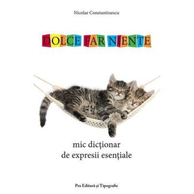 Mic dictionar de expresii esentiale - Nicolae Constantinescu