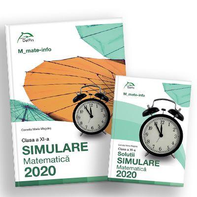 Simulare BACALAUREAT 2019 clasa a XI-a - matematica M_mate-info - Ed. Delfin