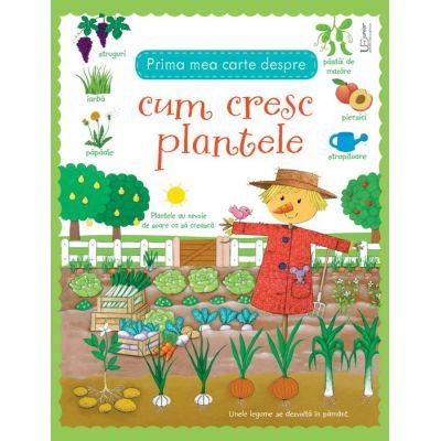 Prima mea carte despre cum cresc plantele - Usborne Books