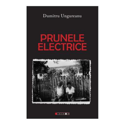 Prunele electrice - Dumitru Ungureanu